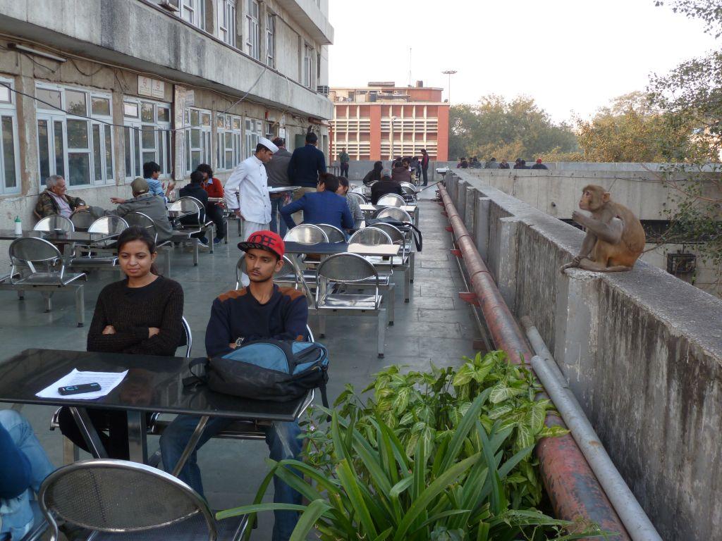 Cafe Bar Lounge Mokka
